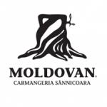 logo-moldovan-300x293